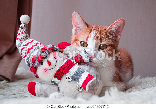 bonhomme de neige, emplacement, rouges, chat - csp24507712