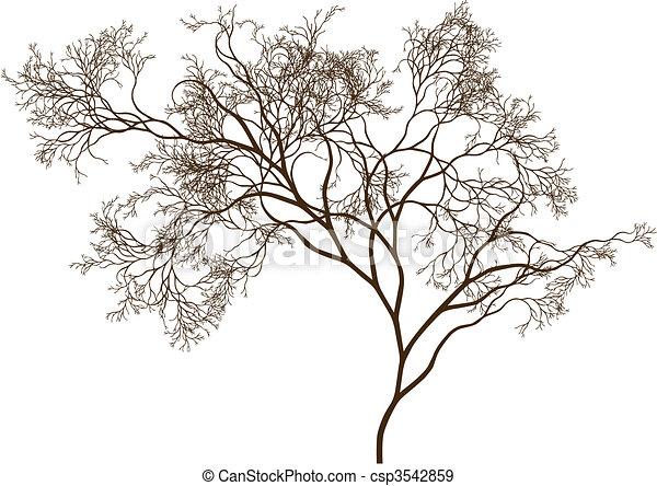 bonito, árvore - csp3542859