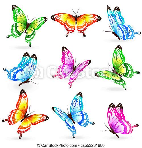 bonito, cor, branca, isolado, borboletas - csp53261980