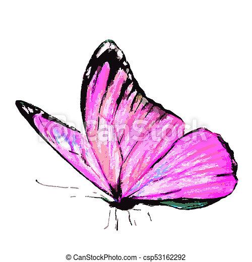 bonito, cor-de-rosa, branca, borboleta - csp53162292