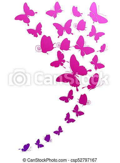 bonito, cor-de-rosa, branca, borboletas, isolado - csp52797167