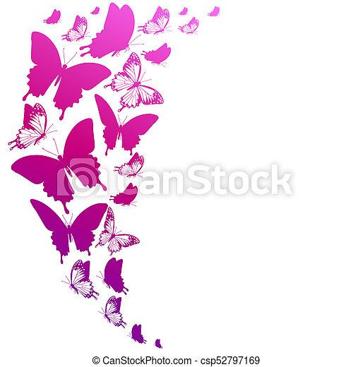 bonito, cor-de-rosa, branca, borboletas, isolado - csp52797169