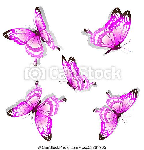 bonito, cor-de-rosa, branca, borboletas, isolado - csp53261965