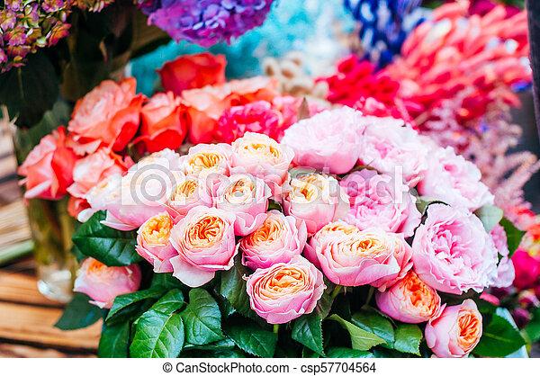 bonito, flores côr-de-rosa, rosas - csp57704564
