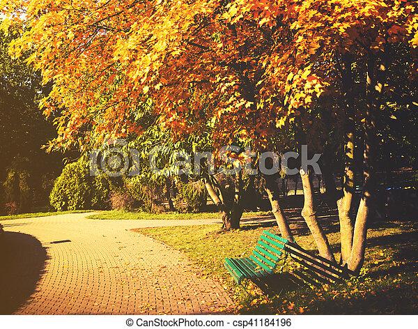 bonito, outono sai, park., coloridos - csp41184196