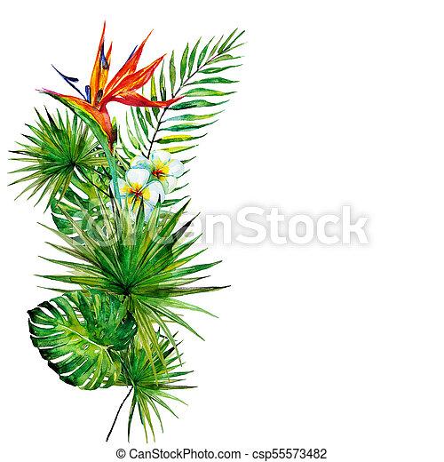 bonito, tropicais, folhas, flores, aquarela, palma - csp55573482
