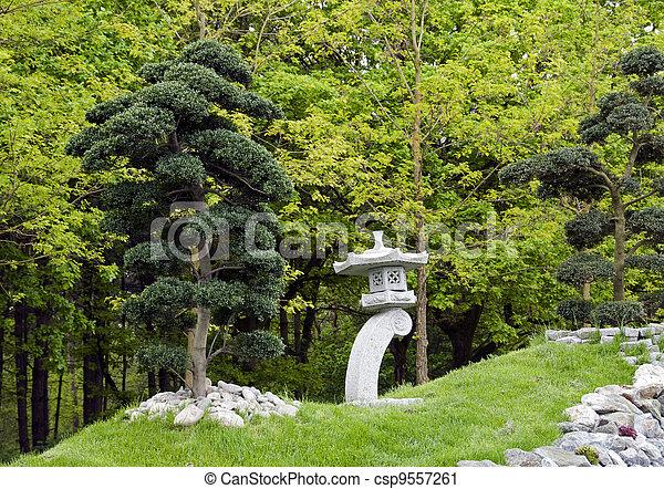 Photographies de stock de bonsai, jardin, arbres, japonaise ...