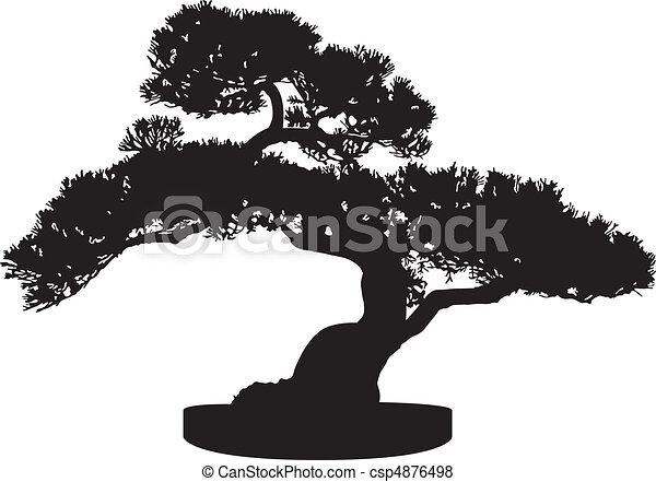 bonsai træ, silhuet - csp4876498