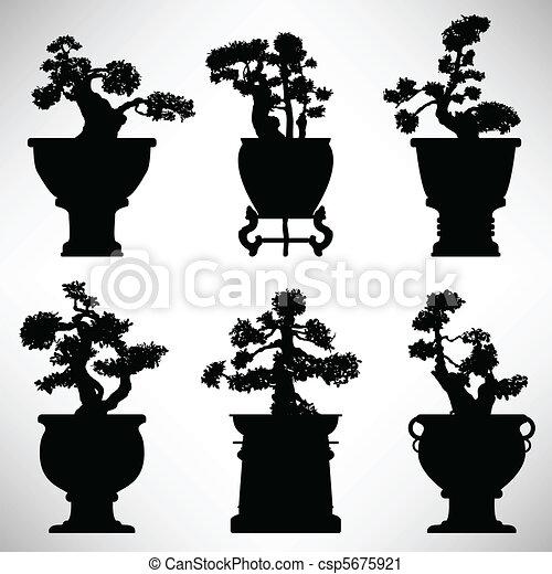 Bonsai Tree Plant Flower Pot - csp5675921