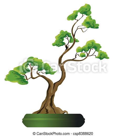 Bonsai tree vector illustration - csp8388620