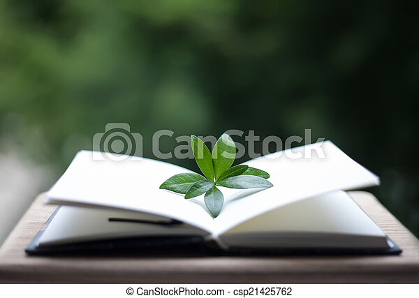 book or notebook with leaves on neture background - csp21425762