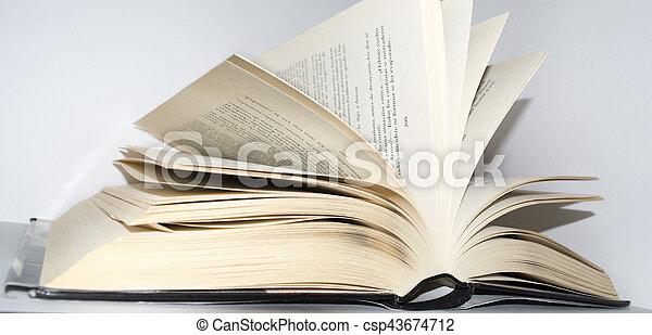 Book - csp43674712