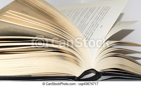 Book - csp43674717