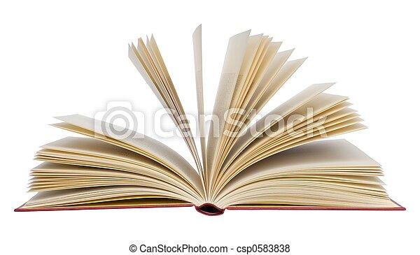 Book - csp0583838