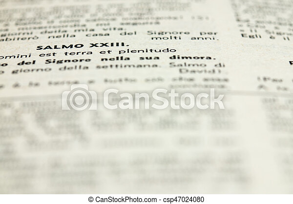 Book - csp47024080