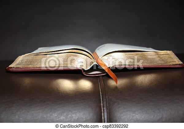 Book - csp83392292