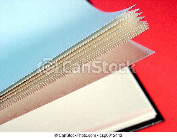 Book - csp0012443