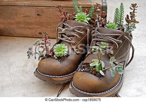 Boot Planter - csp1859075