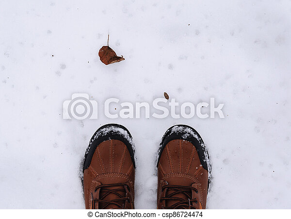 boots and dry leaf in winter - csp86724474
