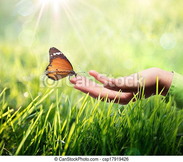borboleta, capim, mão - csp17919426