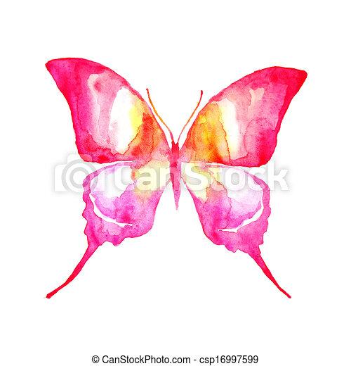 borboleta, desenho - csp16997599