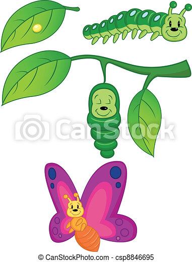 borboleta, metamorfose - csp8846695