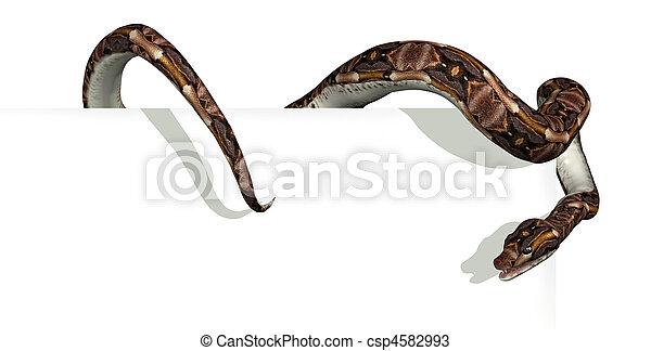 bord, serpent, signe - csp4582993
