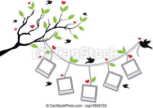 bordas, foto, árvore, pássaros - csp10802153