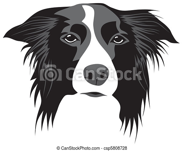 abstract vector illustration of border collie head vector search rh canstockphoto com Dog Clip Art border collie clip art free