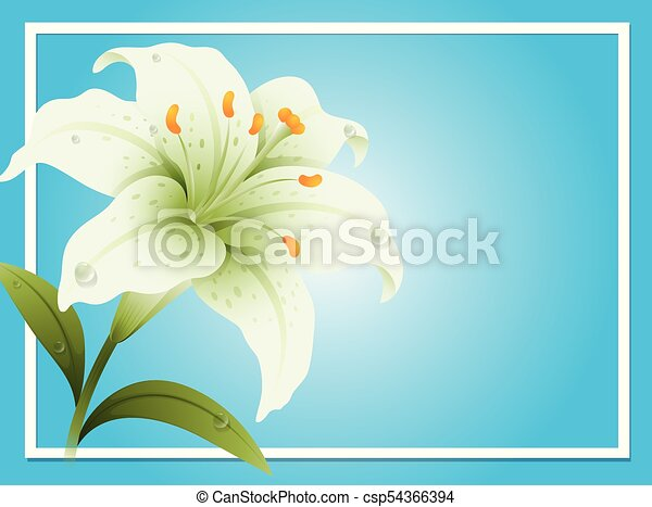 Border template with white lily - csp54366394