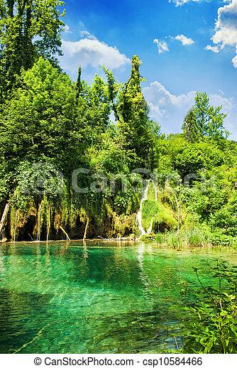 bos, meer - csp10584466