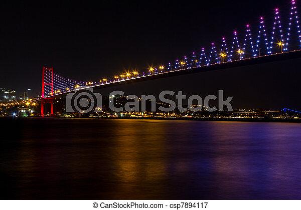 Bosphorus Bridge from Istanbul, Turkey - csp7894117