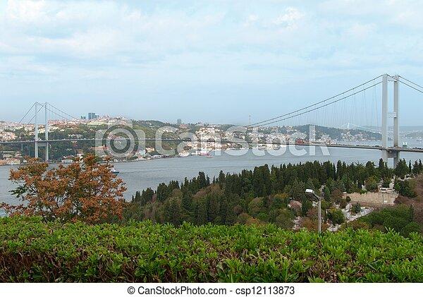 Bosphorus bridge in Istanbul, Turkey - csp12113873