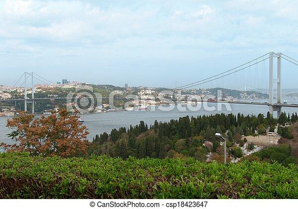 Bosphorus bridge in Istanbul, Turkey - csp18423647