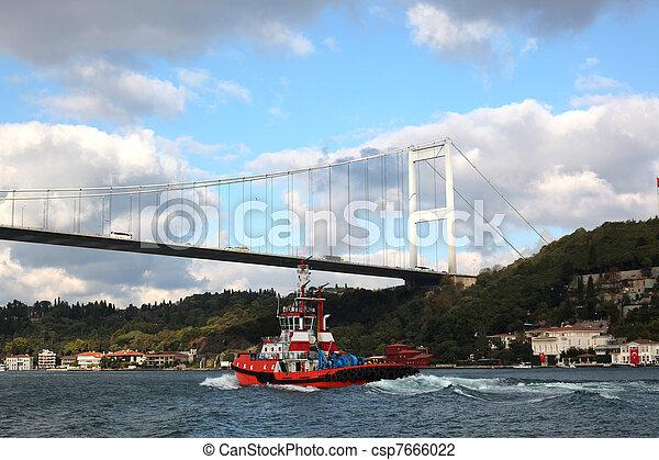 Bosporus Bridge Istanbul - csp7666022
