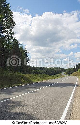 Camino en el bosque - csp6238263