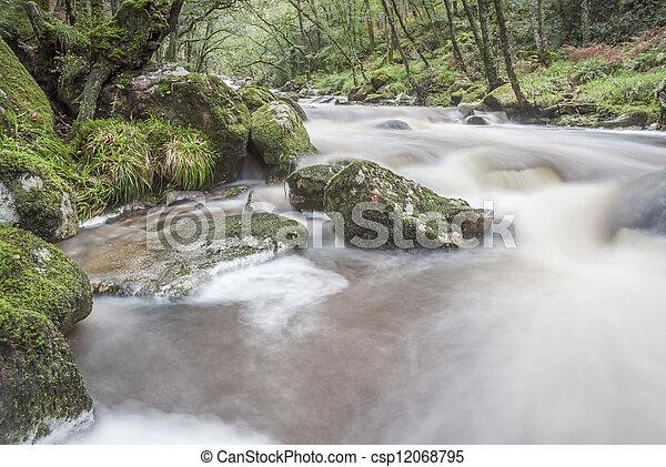 rio que fluye rápido en bosques, dardomoor, Reino Unido. - csp12068795
