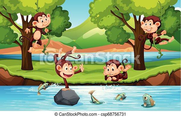 Mono en el bosque - csp68756731