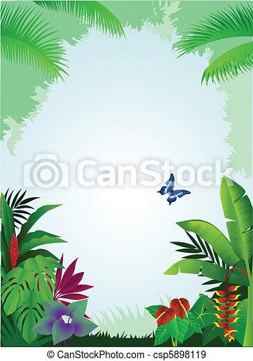 bosque tropical, plano de fondo - csp5898119