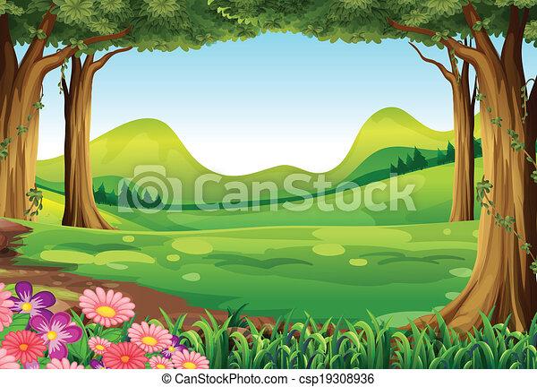 Un bosque verde - csp19308936