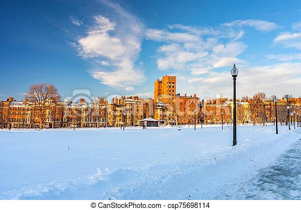 Boston public garden at winter - csp75698114