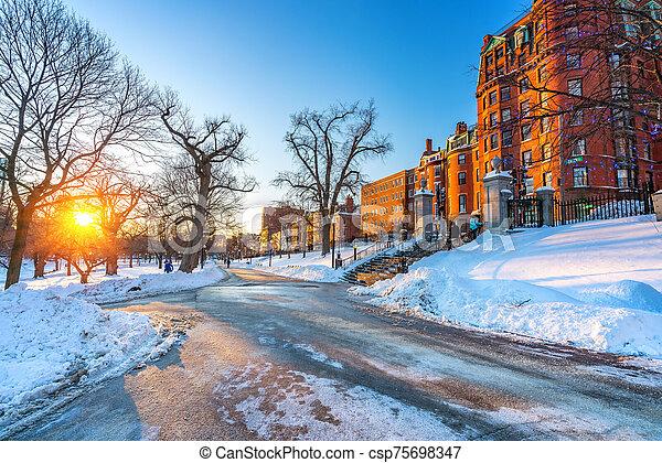 Boston public garden at winter - csp75698347