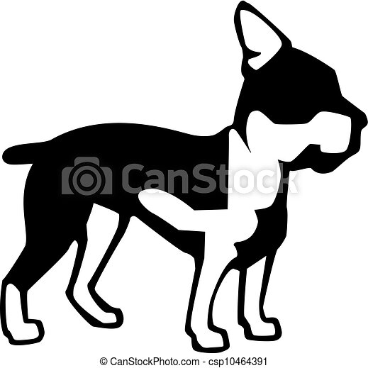 boston terrier vector illustration of a boston terrier rh canstockphoto com boston terrier clipart boston terrier christmas clip art