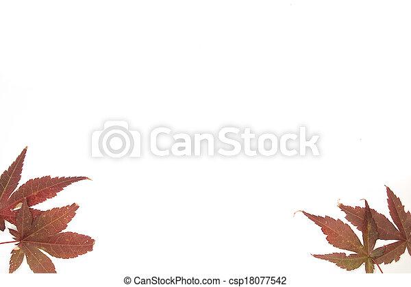 Botanical Frames - csp18077542