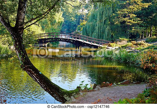 Botanical garden - csp12147746