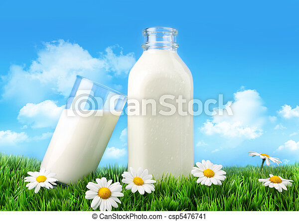 Bottle and glass of milk with grass and daisies  - csp5476741