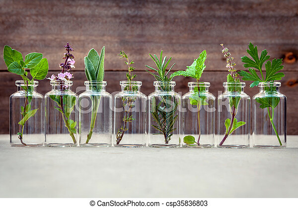 Bottle of essential oil with herbs - csp35836803