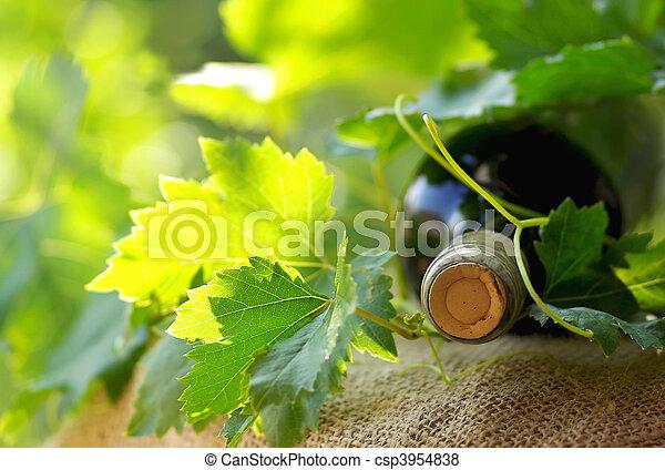 Bottle of red wine. - csp3954838