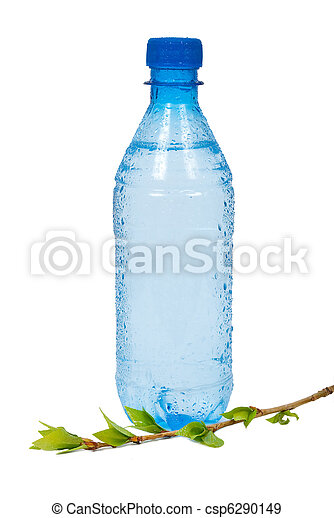 Bottle of water with green branch - csp6290149