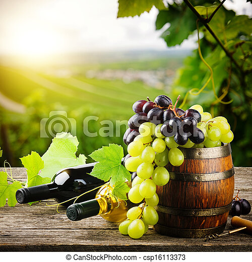 Bottles of red and white wine with fresh grape - csp16113373